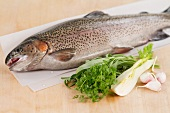 One trout and fresh herbs