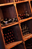 Bottles of wine in museum wine cellar (Williamsburg Winery, Williamsburg, Virginia, USA)