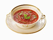 Creamy Fennel Tomato Soup in a Soup Bowl with Saucer
