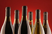Bottles of red wine and white wine