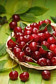 Sour cherries in a shallow basket