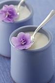 Yoghurt with purple flowers