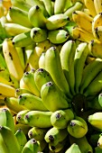 Bunches of bananas (macro zoom)