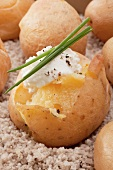 Baked potatoes with sour cream and chives