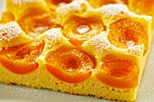 An apricot cake dusted with icing sugar