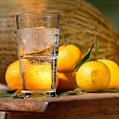 Water glass with ice cubes, tangerines and melons