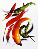 Mehrere Chilischoten (rot, grün, orangefarben)