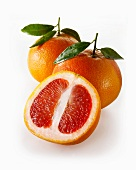 Red grapefruits, whole and halves