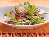Beef salad with green asparagus and herbs