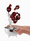 Washing beetroot in a sieve