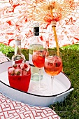 Wine glasses with fruit ice cubes on the grass under a sun umbrella