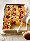 Hazel nut cake with sour cherries and plums
