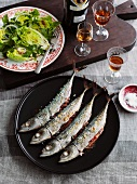 Grilled mackerel with lettuce hearts and amontillado sherry