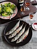 Gegrillte Makrelen mit Salatherzen und Amontillado Sherry