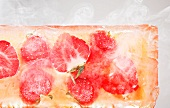 Strawberries in a block of ice