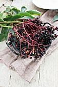 Elderberries in an enamel pot