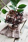 A twig of elderberries in a vase
