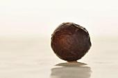 Praline truffle