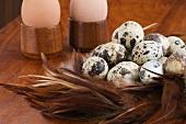 Quails' eggs and hens' eggs