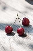 Three cherries on stalks