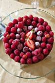 Raspberry tart with forest fruits