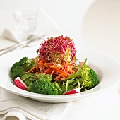 Vegetable salad with broccoli, carrots and bean sprouts