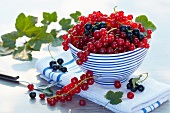 Redcurrant and blackcurrant in a bowl on a folded tea towel