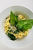 Spinach pasta with blue cheese