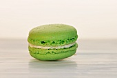 A Single Pistachio Macaroon on a White Background