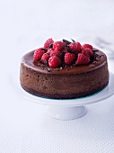 Chocolate cheese cake with raspberries