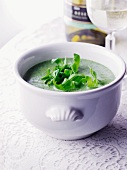 Green herb soup with rocket