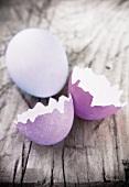 An egg and egg shells