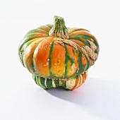 A pumpkin (cucurbita maxima)