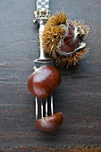 Sweet chestnuts and antique fork