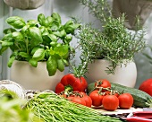 Various herbs and summer vegetables on a garden table