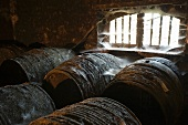Old Cognca barrels (Domaine Grollet, France)