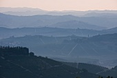 View from La Morra at Castiglione Falletto (Piedmont)