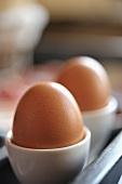Zwei Eier im Eierbecher