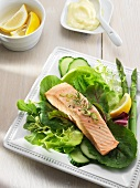 Poached Salmon on a Bed of Mixed Greens with Cucumber and Asparagus