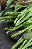 Green Thai asparagus and lettuce