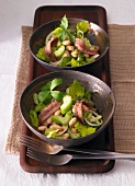 Celery and bean salad with sardine fillets