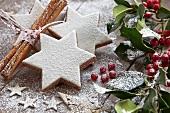 Zimtsterne mit Puderzucker und Weihnachtsdeko