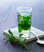 A glass of peppermint tea