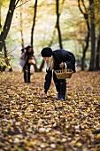 Zwei Frauen sammeln Pilze im herbstlichen Wald