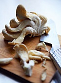 Oyster mushrooms on a chopping board with a knife