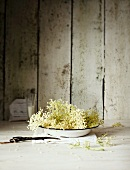 Elderflowers on a plate