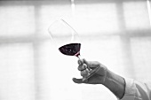 A hand holding a glass of red wine at a tasting session