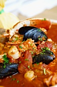 Cioppino; Italian-American Fish Stew;Close Up