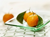 Two Tangerines with Stems and Leaves on a Glass Plate