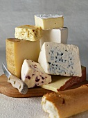 Assortment of Cheese; Parmesan, Blue, Brie, Cranberry White Cheddar, Lorraine Swiss and Goat